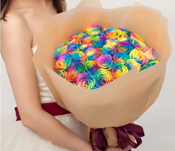 彩虹玫瑰花的花语代表什么