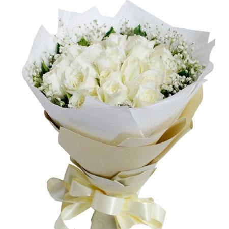 白玫瑰花语是什么?白玫瑰代表什么?